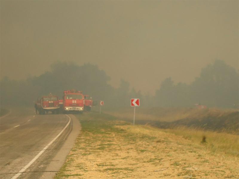 Лесной пожар угрожал городу на Херсонщине