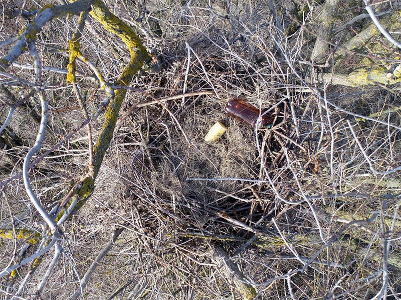 Пустую тару на Херсонщине собирают даже птицы