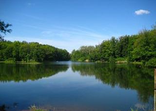 Деньги за аренду водных объектов будут поступать в местные бюджеты