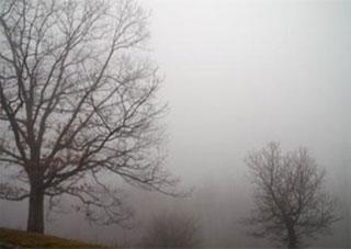 На Херсонщині тепло і туман