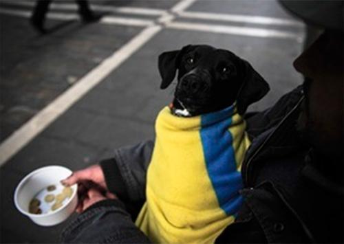 Егор Устинов: Если сегодня не помочь социально незащищенным людям, то завтра будет уже поздно