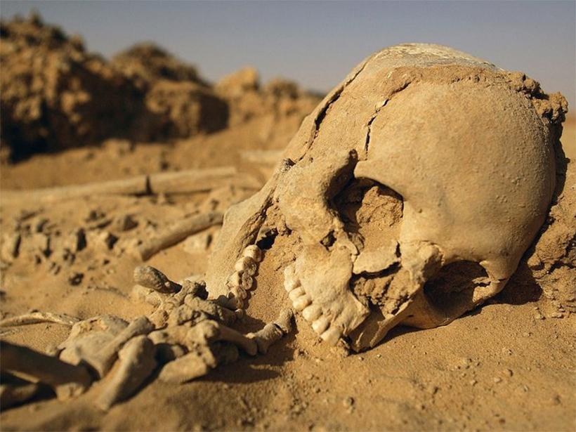 Женщина попала в объятия скелета на Херсонщине