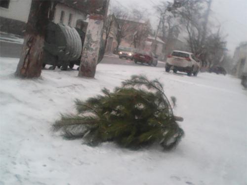 Брошенные елки блокируют тротуары в Херсоне