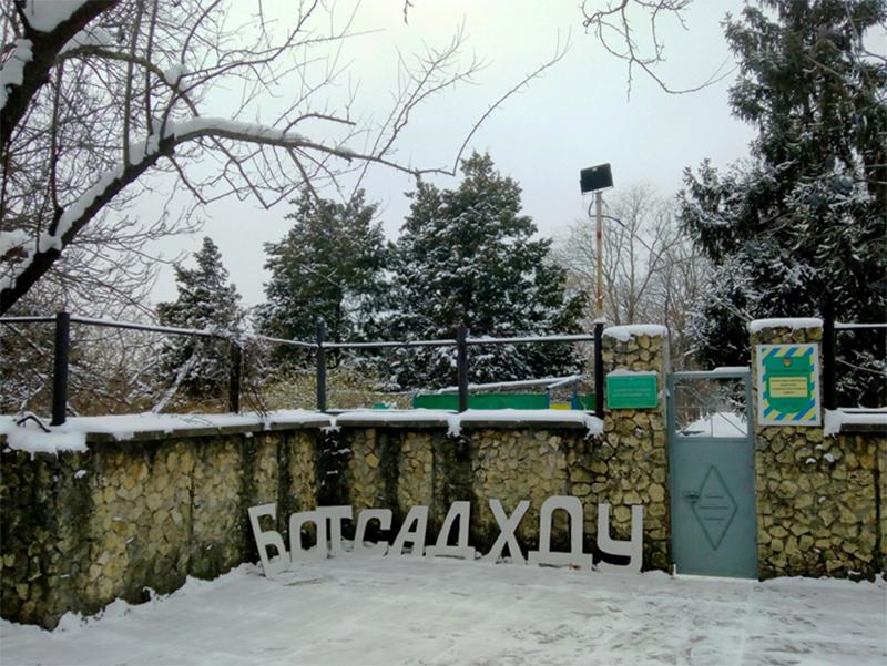 Зимняя прогулка по Херсонскому  ботаническому саду