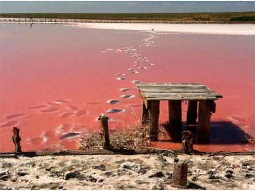 Озеро на Херсонщині цілюще та не безкоштовне