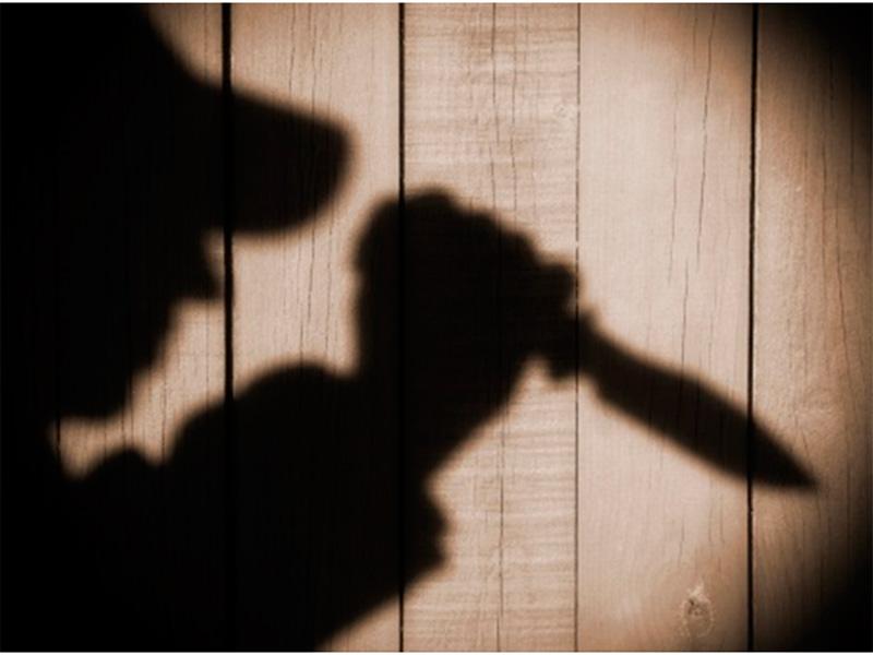 Дачный детектив на Херсонщине