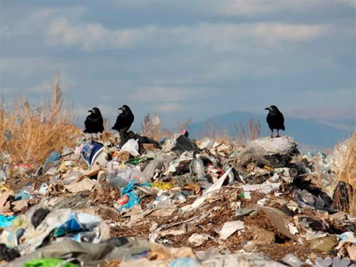 Сортування відходів у Бериславі відкладається