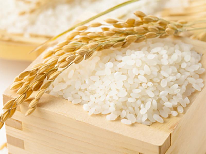 Херсонський рис підкорить аграріїв