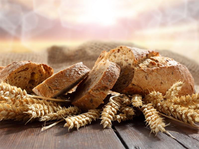 Будем с хлебом: состояние озимых улучшилось на Херсонщине
