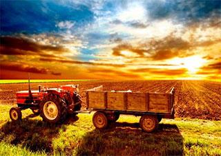 Розвиток сільських територій Херсонщини