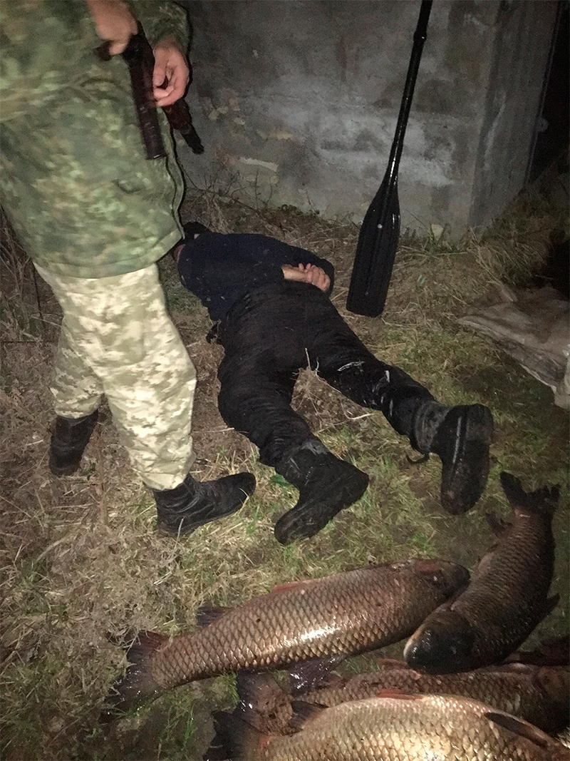 В балці Каховського водосховища браконьєри розорили нерестовище