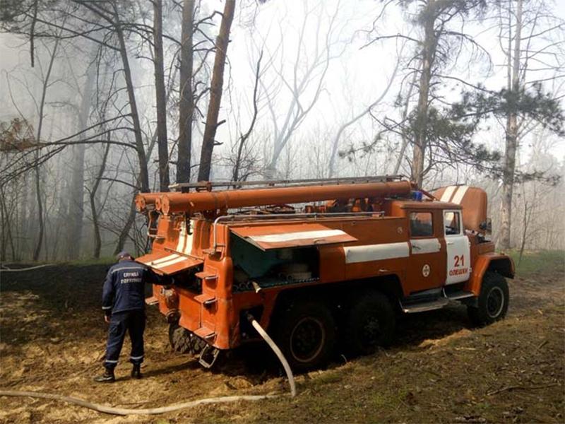 Усиливают пожарную охрану лесов Херсонщины
