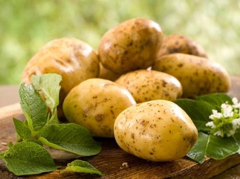 Картопля херсонців розчарувала