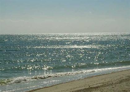 Азовское море почти угробили...