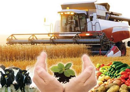 Инвестиционный потенциал аграрного сектора Херсонской области открыт для инвесторов