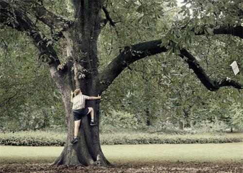 У Скадовську зняли підлітка з 7-метрового дерева