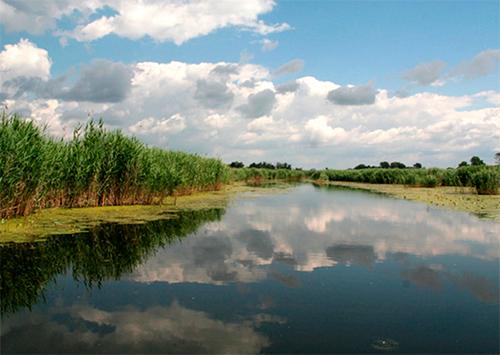 Кому на Херсонщині природний парк заважає?