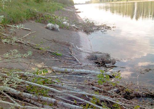 На Каховський магістральний канал накинули оком природогуби