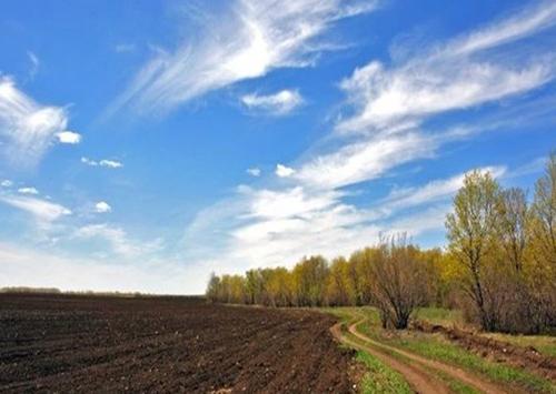Народ Украины на референдуме должен сказать поддерживает он продажу земли или нет