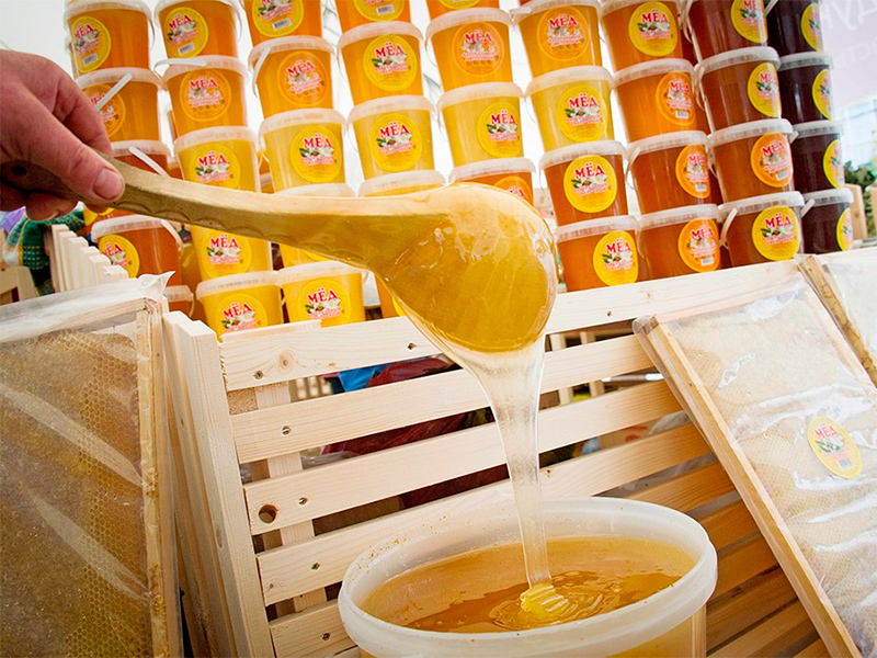 Объединяются пчеловоды Херсонщины