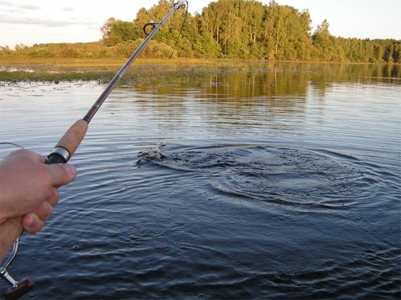 Рыбакам Херсонщины все же позволили выйти на путину