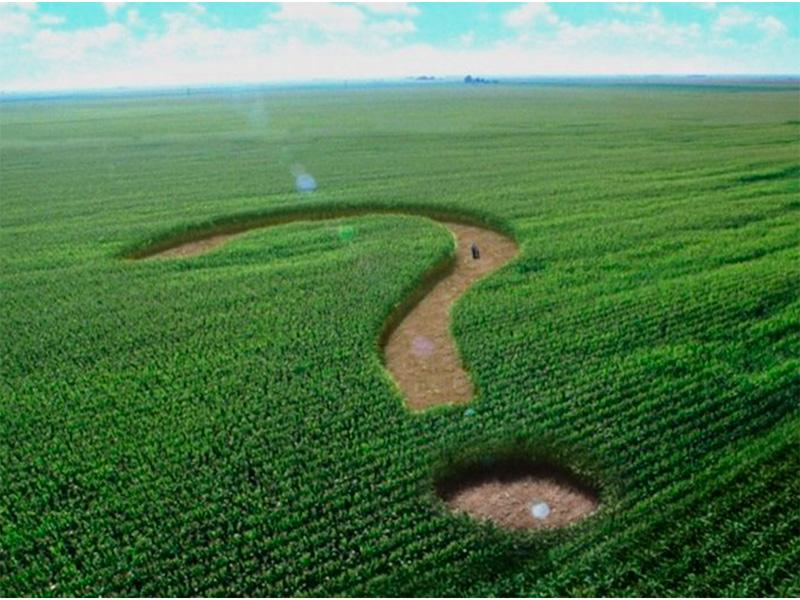 Недбалість чиновників чи корупційні зловживання земельними ресурсами в Олешківському районі?