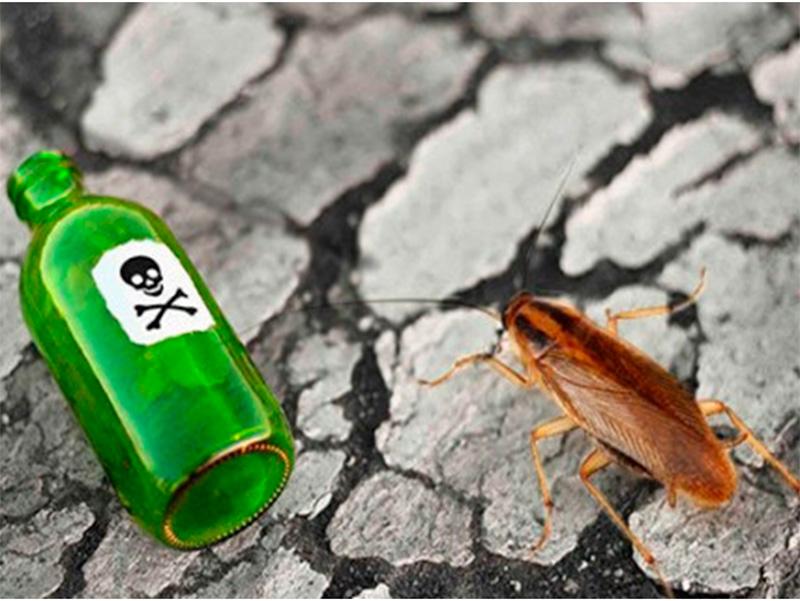 На Херсонщине в борьбе с тараканами чуть не погибла женщина