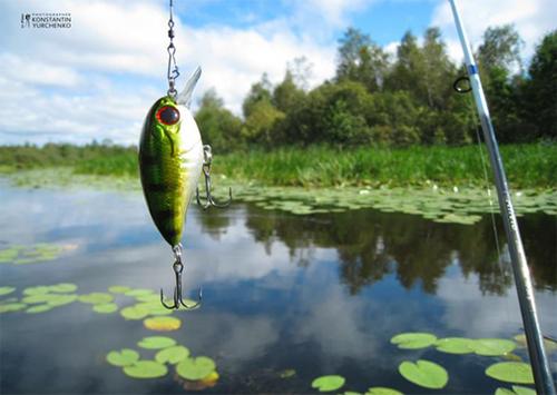 Платная рыбалка в Херсонской области отменяется?