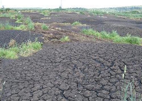 Отравленная земля на Херсонщине