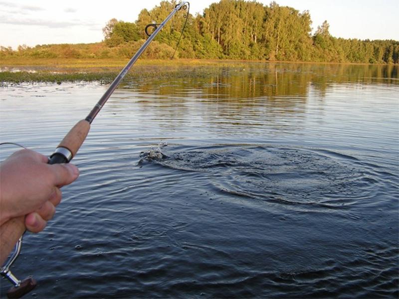 Рыбалка на Херсонщине останется бесплатной