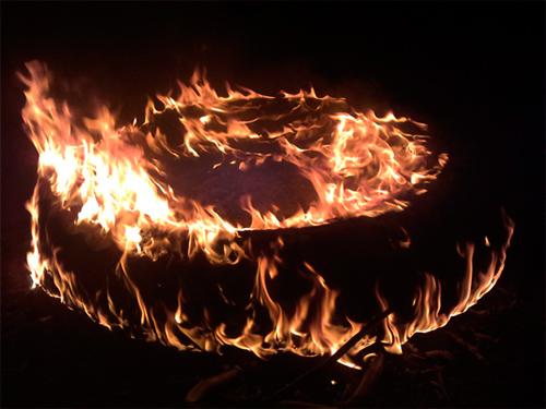 Лесной пожар на Херсонщине устроили с помощью шины