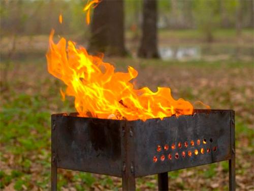 Очередной поджог леса у йодовых озер на Херсонщине
