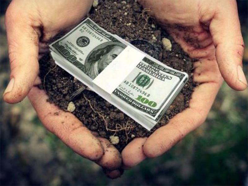 Бюджети наповнюють аграрії Херсонщини