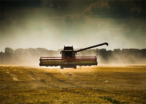 На Херсонщині збирати врожай припинили через зливи