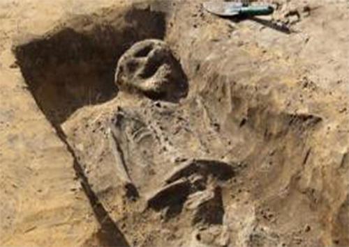 Прах воинов на Херсонщине потревожили «черные археологи»