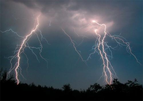 Удар молнии поджег лес на Херсонщине