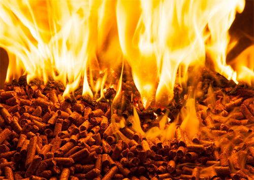 Альтернативное топливо дорожает на Херсонщине