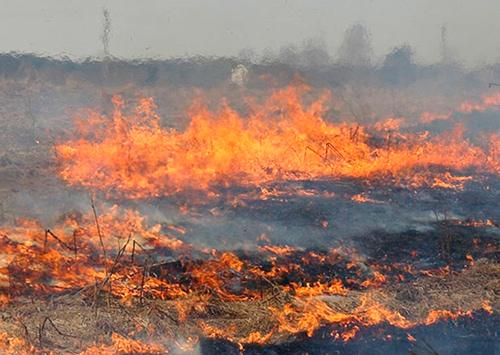 Огонь оставил без воды селян на Херсонщине
