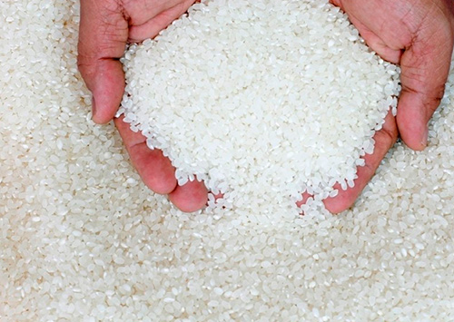 Херсонщина очікує рекордний врожай рису
