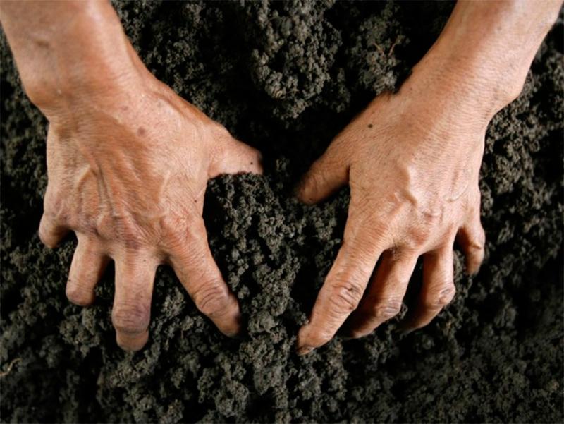 Захоплення сільськогосподарських земель стало справжнім лихом на Херсонщині