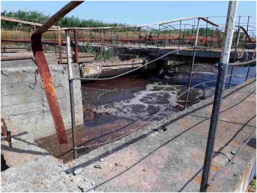 Скадовск на пороге экологического бедствия
