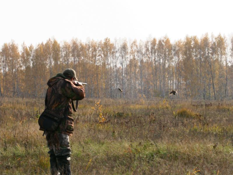 Открытие сезона охоты на Херсонщине перенесут