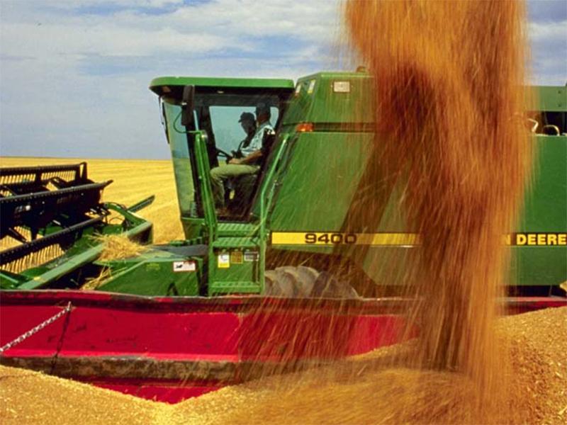 Урожай озимого ячменя удивил специалистов на Херсонщине