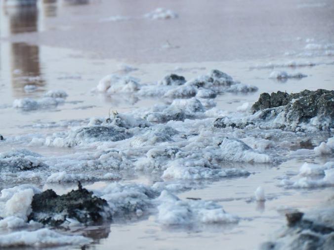 Соли так много, что она лежит, как снег (фото)