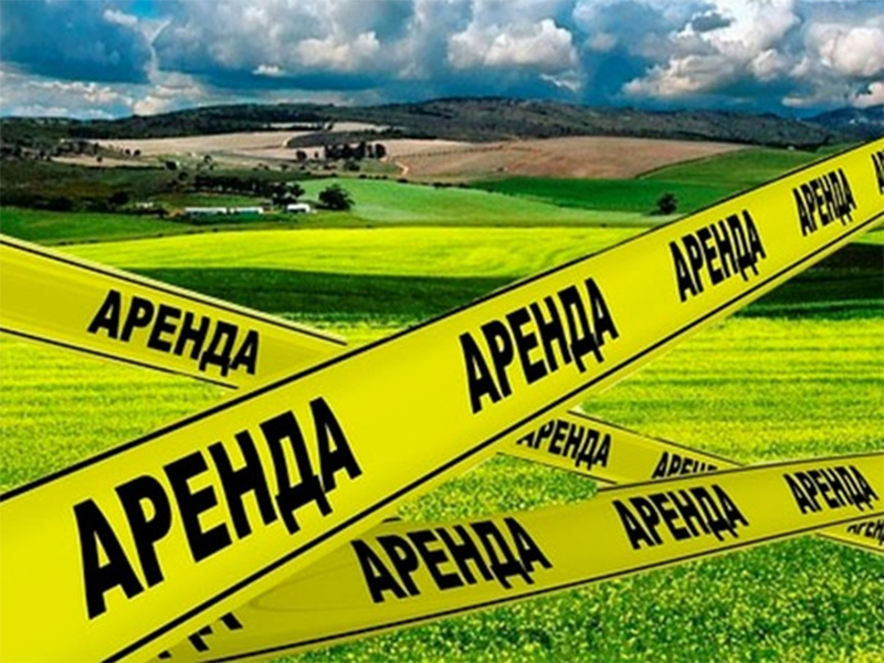 За оренду земель сільськогосподарського призначення на Херсонщині сплачено 52,8 млн. гривень