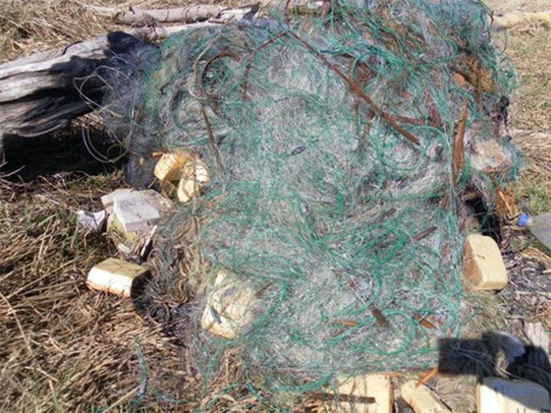 Сиваш на Херсонщині перекрили браконьєрськими сітками