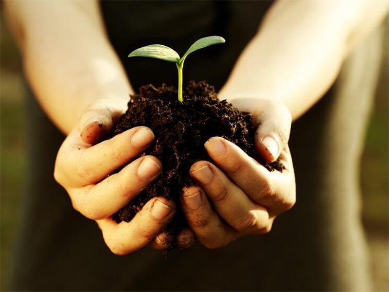 На Херсонщині проведено 110 перевірок дотримання вимог земельного законодавства
