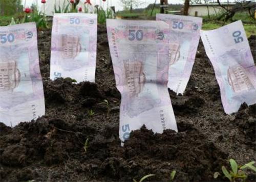 Херсонская земля обогатила бюджет на 41 млн гривен
