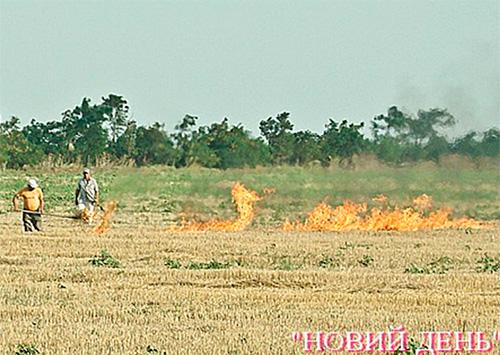 Заповедник на Херсонщине - в кольце огня