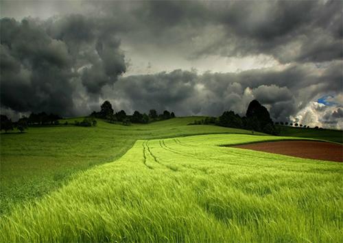 Конфлікт на Херсонщині: Посієш вітер — пожнеш бурю